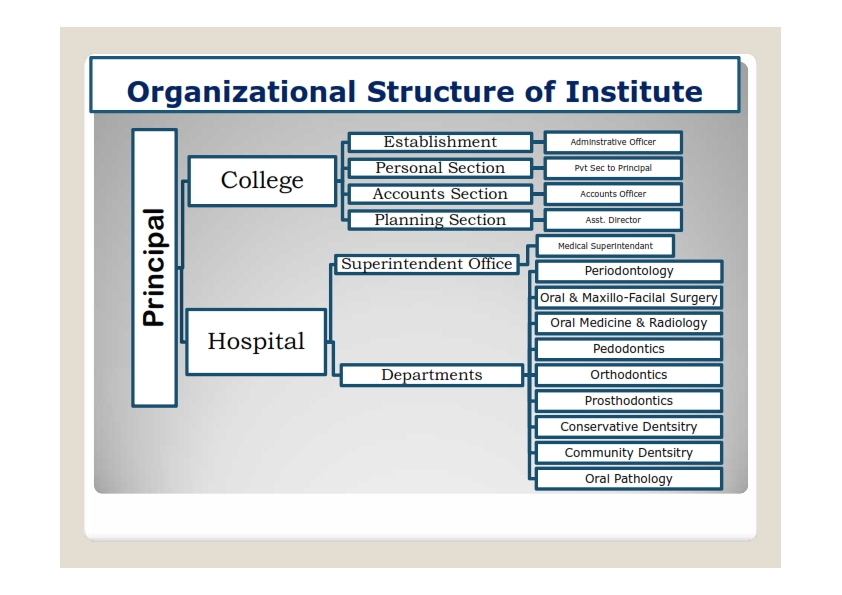 Organizational Structure  Indira Gandhi Government Dental College